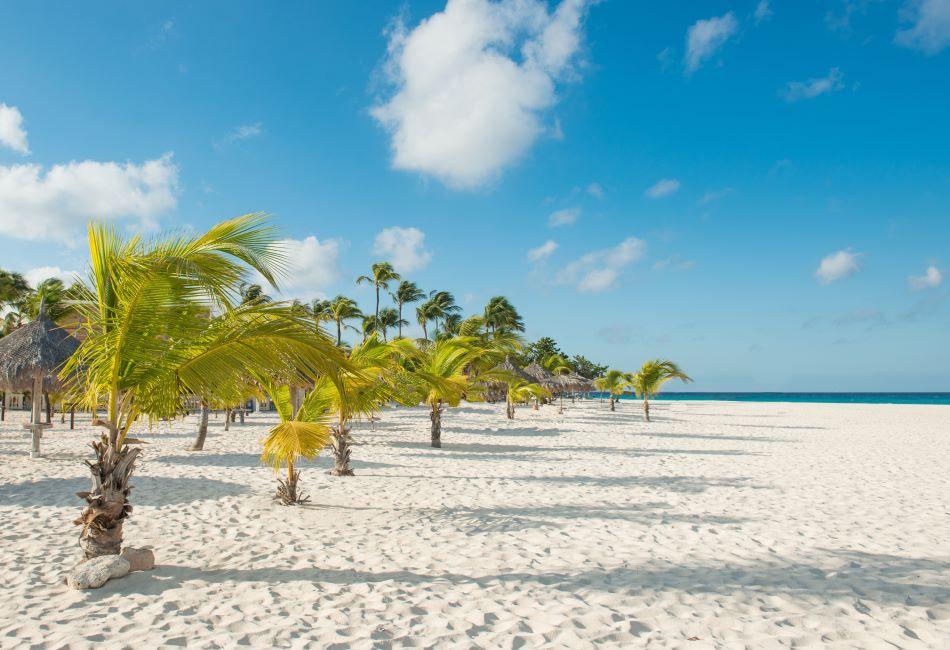 Aruba Eagle Beach 01